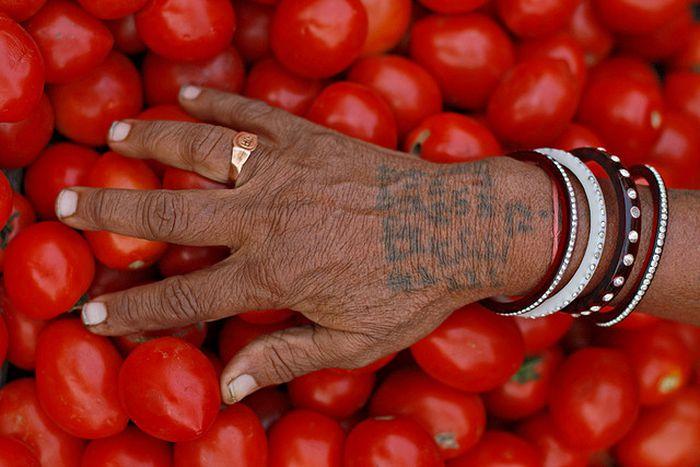 Image for Green, Greener, Greenest: India Goes Organic