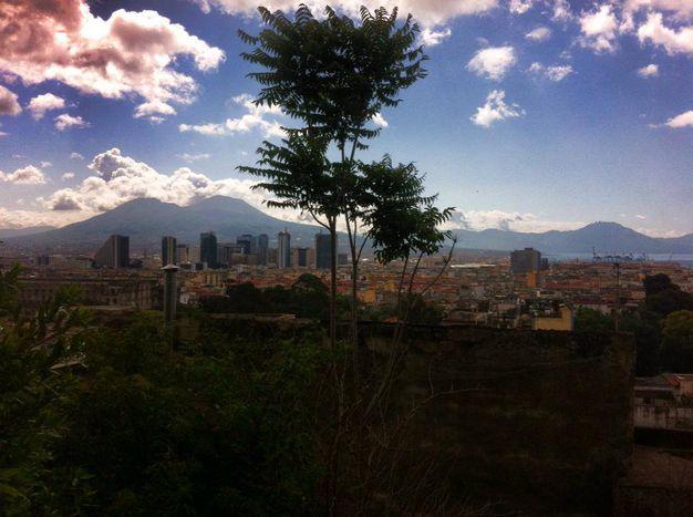 Image for Napoli: EUtopia 2013