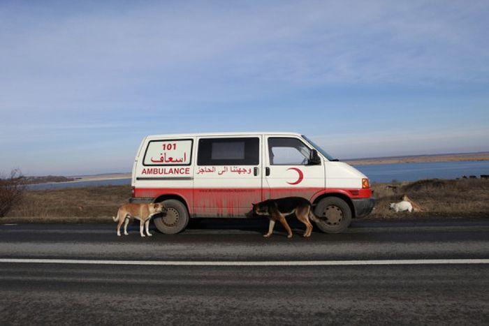 """Image for Viaggio """"Destinazione Checkpoints"""""""