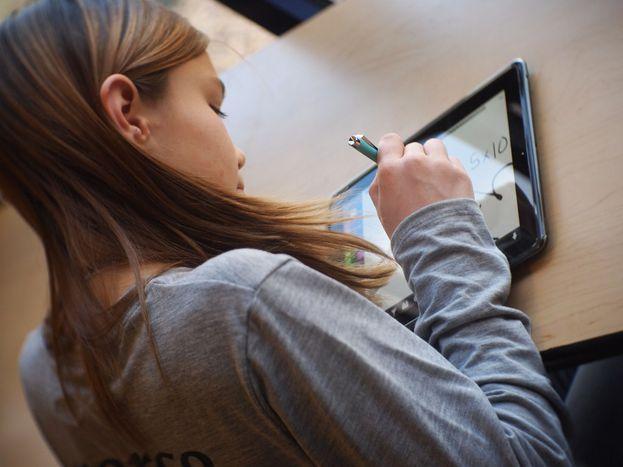 Image for STEVE JOBS SCHOOL: EINE APP-AUSBILDUNG