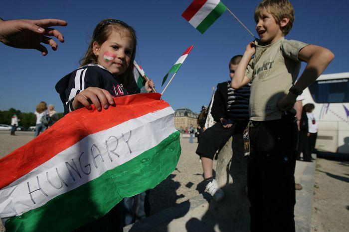 Image for Hungarian minorities in Slovakia: small arrangements between enemies