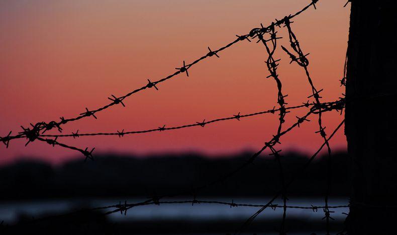 Image for Ungheria: riflessioni sul muro della discordia
