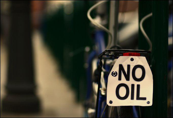 Image for Petrolio in Val Padana: un disastro ecologico italiano