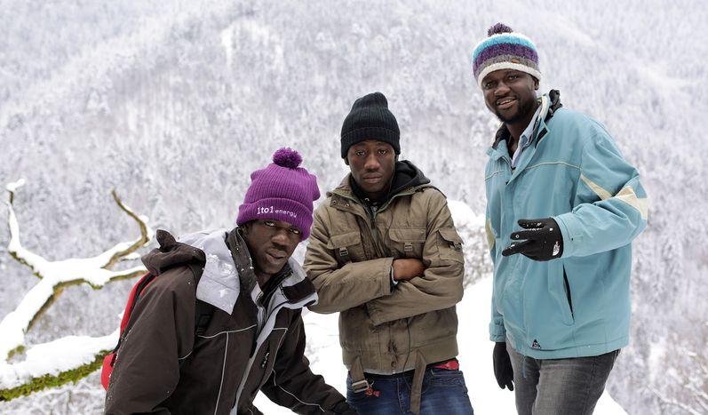 Image for Destinazione Germania:l'avventura di tre ragazzi del Gambia (II)