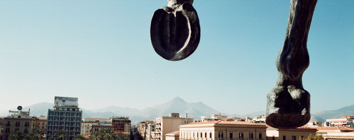 Image for Sitting on the top of Politeama (e di Palermo)