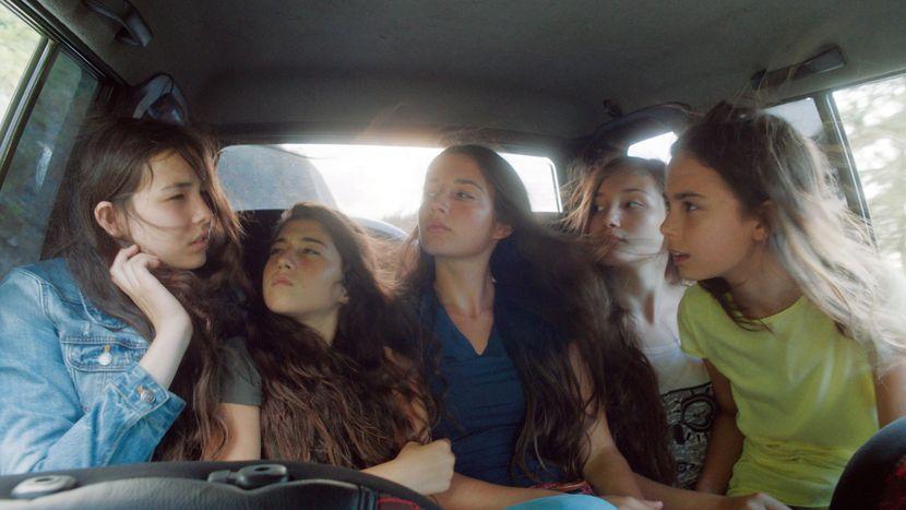 Image for Mustang: cinque sorelle contro tutti