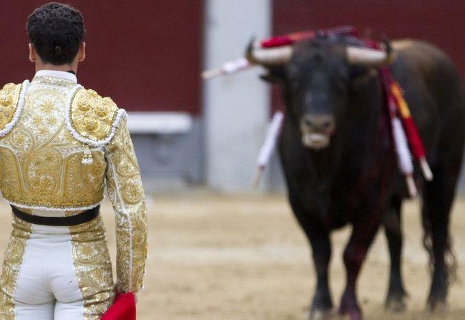 Image for Bull Fight! Madrid vs. Catalonia