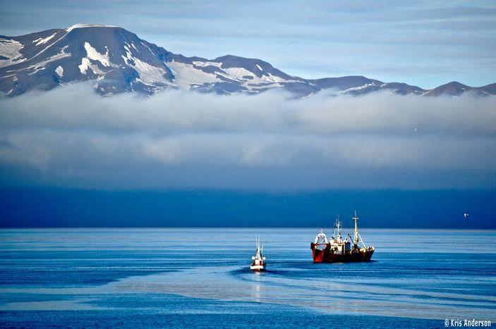 Image for Reisen: Fünf Dinge, von denen man in Island die Finger lassen sollte