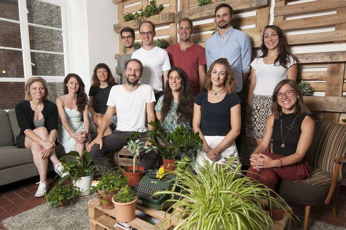 Image for Ecosia: negocio por el bien del planeta