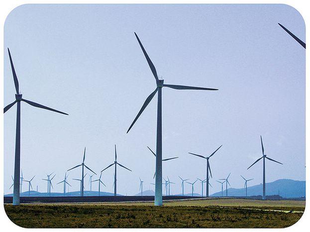 Image for Rumanía al viento