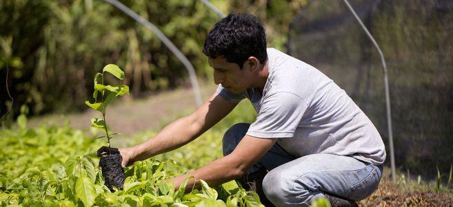 Image for Ecosia : dubusiness pour le bien de la planète