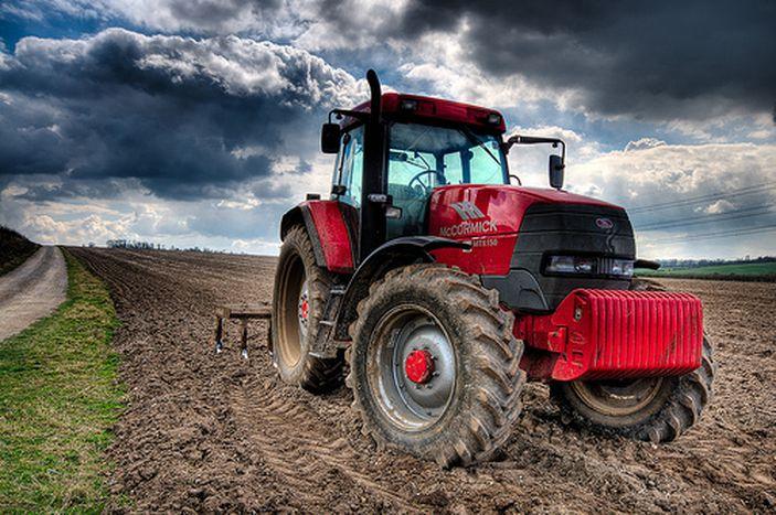 Image for Venta por internet: el fin de los intermediarios en productos agrícolas