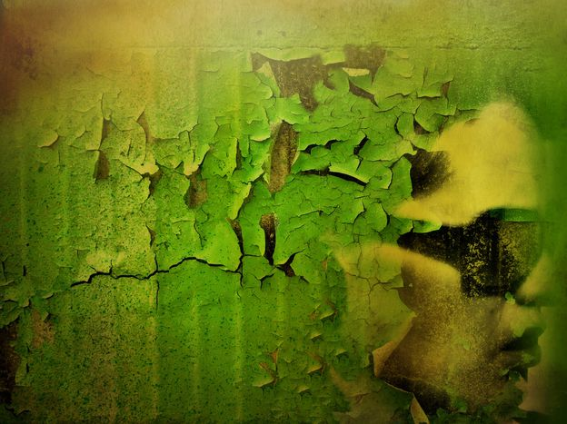 Image for PEGIDA en Allemagne: la couleur des pressentiments