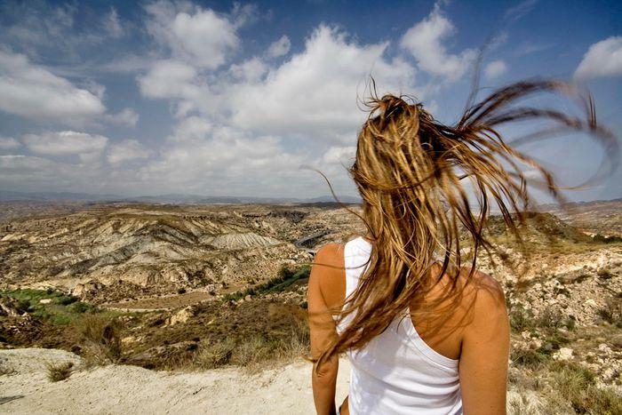 Image for Vom Regen in die Traufe: Hurrikan Sandy und Bomben in Tel Aviv