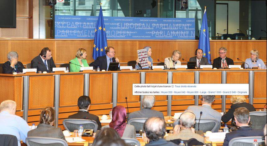Image for Le Parlement européen attaqué par l'Iran