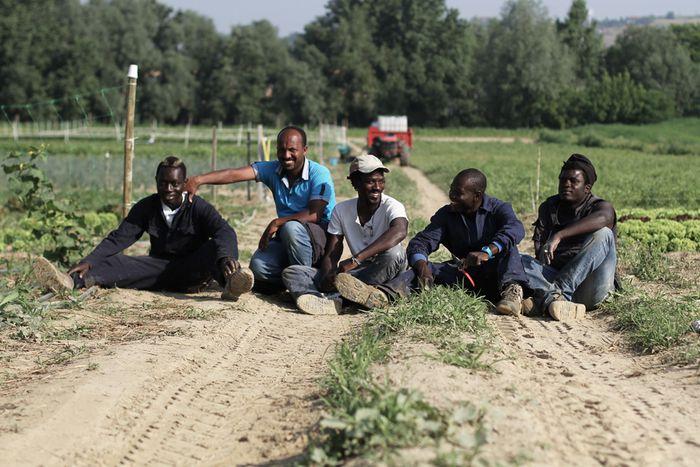 Image for Flüchtlingshilfe: Integration auf elf Hektar Land