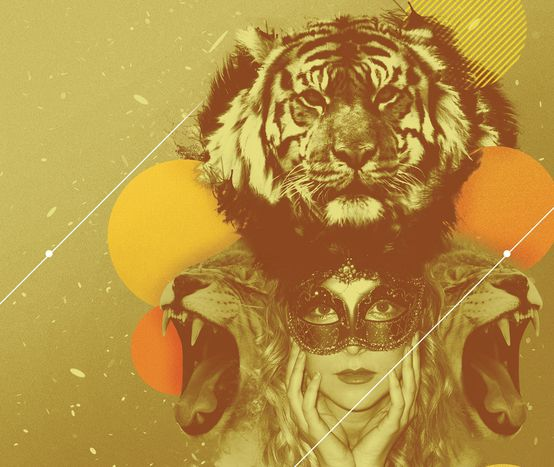 Image for Turkey's Masked Ball