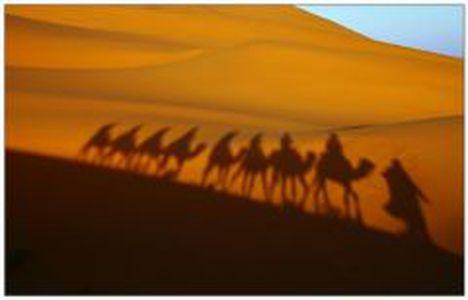 Image for Il sistema tribale libico: identità dalla differenza?