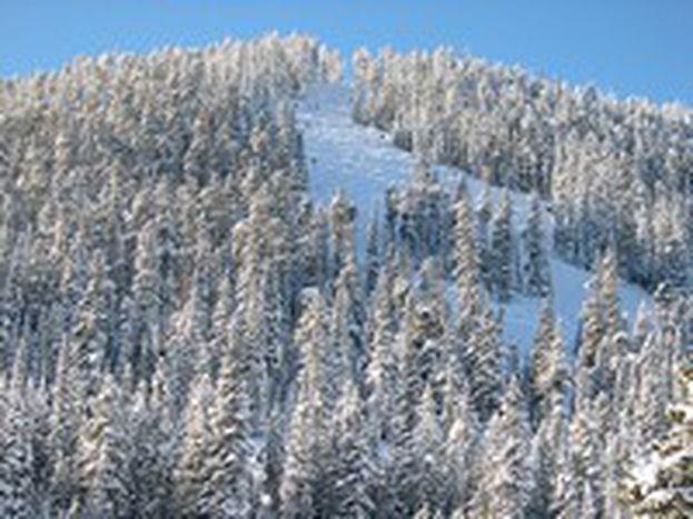 Image for Europas Skigebiete schmelzen