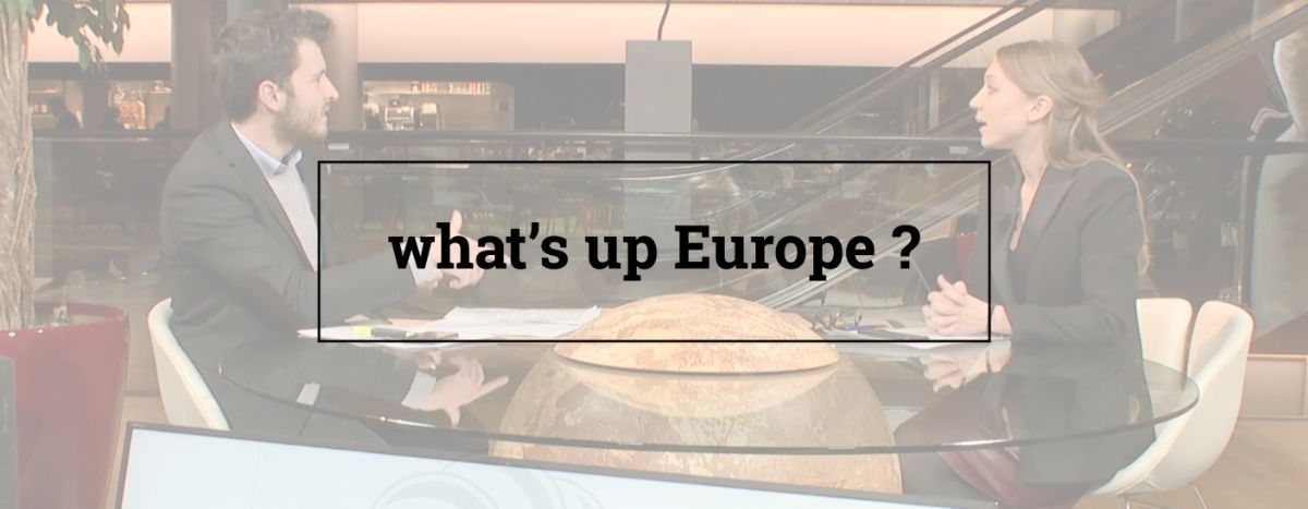 Image for Il Green Deal della Commissione europea rappresenta davvero una svolta?