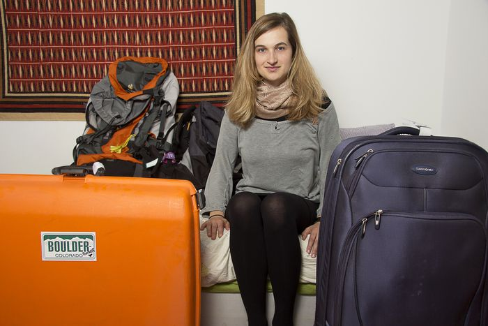 Image for Travellers