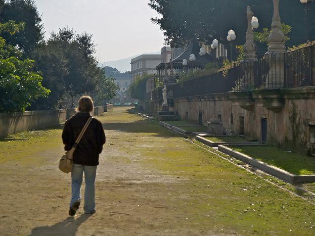 Image for Riscoprire Palermo nelle pagine del Gattopardo