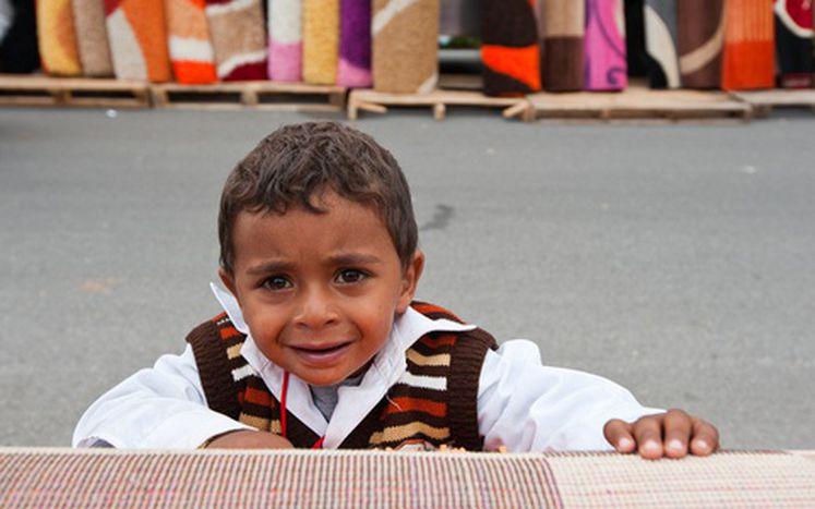 Image for Francia: la tragedia del pueblo romaní
