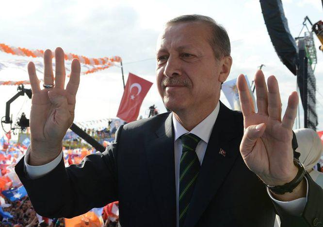 Image for Turquie : Erdogan, bidules Turcs