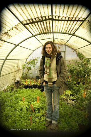 Image for A Bruxelles, agriculture et urbain font bon ménage (10 photos)