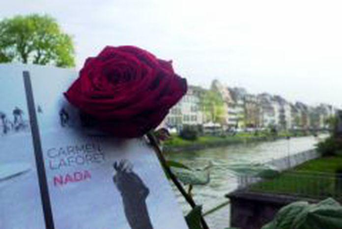 Image for Un livre et une rose, la combinaison parfaite