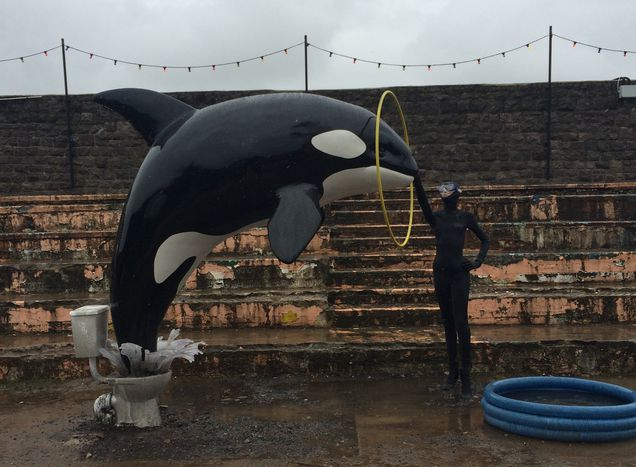 Image for Monster trucks and a toilet Shamu: Banksy's Dismaland