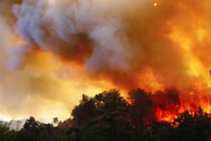 Image for A Europa e os incêndios florestais