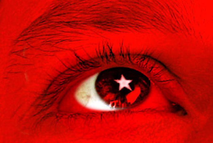 Image for Sechs gute Gründe für den EU-Beitritt der Türkei